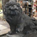 氷川神社【お手する狛犬とテルテル坊主】
