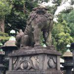 上野東照宮【僧帽筋に埋もれる狛犬】