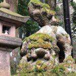 玉作湯神社【苔好きにもおすすめ】